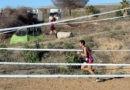 Múltiples podios en el XXII Cross Popular 'Ciudad de Jaén'